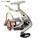ダイワ(Daiwa) 06 トーナメントISO Z3000LB
