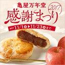 あずきアップルパイ あずき りんご パイ アップルパイ 焼菓子 感謝まつり 期間限定 おやつ お菓子 東京自由が丘 亀屋万年堂