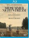 樂天商城 - アレクサンダー・エクマン:バレエ《真夏の夜の夢》[Blu-ray Disc]