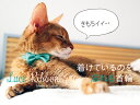 necono 猫の首輪 『Luce Ribbon』 -ルーチェ リボン-  10-30cm 安全 セーフ