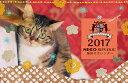 【メール便対応】2017年カレンダー ネコリパブリックオリジナル かわいい猫カレンダー 猫 壁かけ