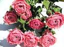 ドライフラワー花材 SPバラ・ジュリエッタ