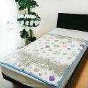 隣のトトロ ハーフケット ハーフ毛布 ジブリ キッズ 日本製 暖かい まっくろくろすけ ととろ クロスケポップ 140×100cm 1125008800 丸眞
