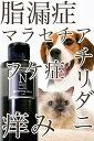 ドライ シャンプー ねこ ペット 水のいらないスキンケア グルーミングローション 無香料犬・猫用(汚れ・マッサージ用) 200ml【Neugier ケアシリーズ】