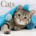 2018猫のフォトカレンダー キャッツ