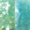 MysticFlakes パールエメラルドグリーン/バタフライ 0.5g【ネイルアート/アートアクセサリー/ラメ/ホログラム/グリッター/ネイル用品】