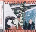 【送料無料選択可!】(有)チェリーベル サイドビジネスシリーズ Vol.3「チェリベ教育基本法・ぶ...