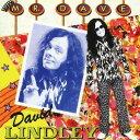 艺人名: D - ミスター・デイヴ (2016年リマスター盤)[CD] / デヴィッド・リンドレー
