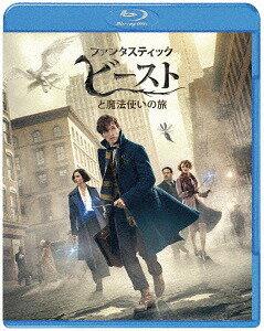 ファンタスティック・ビーストと魔法使いの旅 ブルーレイ&DVDセット [初回仕様版][Blu-ray] / 洋画