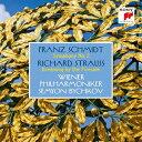Composer: Sa Line - フランツ・シュミット: 交響曲第2番&R.シュトラウス: 炉端のまどろみ [Blu-spec CD2][CD] / セミヨン・ビシュコフ (指揮)/ウィーン・フィルハーモニー管弦楽団