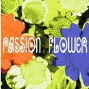 Artist Name: T - Passion Flower [SACD Hybrid][SACD] / T-SQUARE