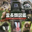 霊長類図鑑 サルを知ることはヒトを知るこ[本/雑誌] / 日本モンキーセンター/編