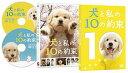 【送料無料選択可!】犬と私の10の約束 プレミアム・エディション / 邦画