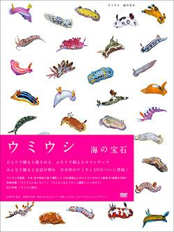 ウミウシ(UMIUSHI)海の宝石 / 趣味教養...:neowing-r:10233956
