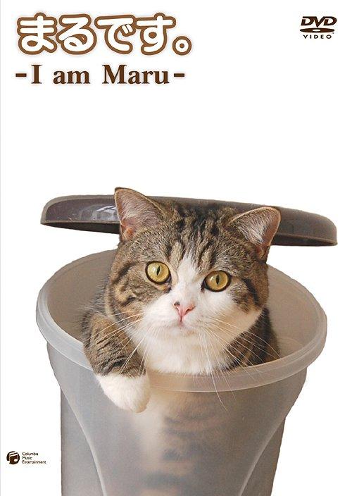 まるです。 -I am Maru- / 趣味教養...:neowing-r:10260787