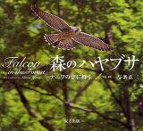 森のハヤブサ ナニワの空に舞う (単行本・ムック) / 与名正三/写真・解説