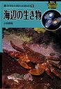 海辺の生き物 新ヤマケイポケットガイド 9 (単行本・ムック) / 小林安雅/著 中野ひろみ/著