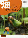 畑の土から芽がでたよ / 土にねむるたねのふしぎ 1[本/雑誌] (児童書) / 松尾洋子 多田多恵子