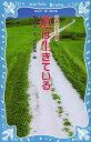 道は生きている 新装版 (講談社青い鳥文庫 76-5 自然と人間)[本/雑誌] (児童書) / 富山和子/作 大庭賢哉/絵