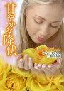 甘やかな降伏 / 原タイトル:SWEET SURRENDER (MIRA文庫) (文庫) / マヤ・バンクス/著 仁嶋いずる/訳