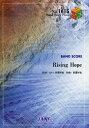バンドスコアピース 「Rising Hope」 by LiSA 〜アニメ「魔法科高校の劣等生」OPテー[本/雑誌] / フェアリー