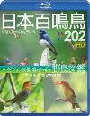日本百鳴鳥 202 HD / ハイビジョン映像と鳴き声で愉しむ野鳥図鑑[Blu-ray] / 趣味教養