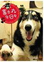 富士丸な日々 アナザーストーリー・アナザーデイズ[DVD] / オリジナルV