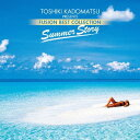 Artist Name: V - 角松敏生 presents FUSION BEST COLLECTION 〜Summer Story〜[CD] / オムニバス