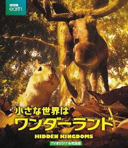 小さな世界はワンダーランドTVオリジナル完全版[Blu-ray]/ドキュメンタリー