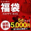 福袋 2020 雑貨 ポーチ バッグ 5点で5000円 プレゼント ギフト 送料無料 敬老の日 お返し td