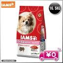 アイムス 1歳〜6歳用 成犬用 ラム&ライス 16.5kg ブリーダーパック IAMS