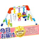 ★ collect on delivery, free shipping ★ melody FunFun gym royal Royal Toyroyal playground equipment baby gym [tomorrow easy correspondence] to send today [HLS_DU]