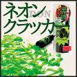 《カネコ》DONネオンクラッカー(蛍光色グリーン)【RCP】【02P29Aug16】