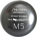 資生堂プロフェッショナル ステージワークス トゥルーエフェクター(マット) M5 / 90g