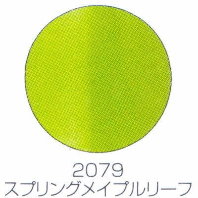 バイオスカルプチュアジェル カラージェル マット スプリングメイプルリーフ 2079 (C)