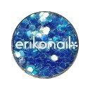 エリコネイル ホログラム ERI-83 ブルーオーロラ L ...