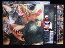 藝術家名: Ha行 - ZC41758【中古】【CD】VO VO TAU 01hz/ボボタウ