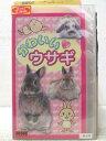 HV06598【中古】【VHSビデオ】かわいいウサギ