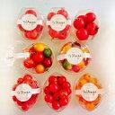 楽天トマトのお店ショップトリアンジュ【送料無料】【トマト】【ミニトマト】【父の日】贈り物におすすめ!ジュエリーボックスパックセットお得な8パックセットスイーツのようなカップセットです。カラフルなジュエリーボックスカップ2、ミディカップ3、ミニ(小鈴)カップ2、ミニ(イエロー)カップ1