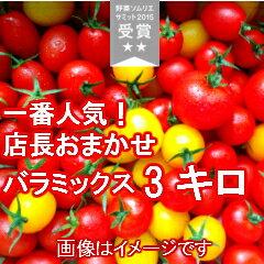 【送料無料】店長おまかせ バラミックス(パックなし)たっぷり3キログラム品種及び配合につきましては、収穫状況により変わります。