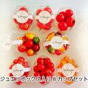 ミニトマト トマト 新鮮 生産者から直送  宅配便なら全国送料無料 今が旬美味しい季節 贈りものに最適5色のトマトが入ったジュエリー..