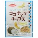 ●【送料無料】【代引不可】フジサワ ココナッツチップス 20g×20セット「他の商品と同梱不可」