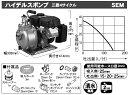 工進 コーシン エンジンポンプ 4サイクル 三菱エンジン搭載ハイデルスポンプ 口径25mm [SEM-25FG]
