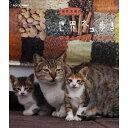 岩合光昭の世界ネコ歩き モロッコ・マラケシュ動物カメラマン・岩合光昭さんがかわいいネコたちをもとめて世界を歩きます。【楽ギフ_包装選択】