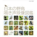 日本の野鳥 鳴き声映像図鑑 DVD