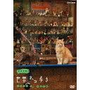 岩合光昭の世界ネコ歩き ソレントとカプリ島 地中海の街角で愛しいネコと出会う旅!
