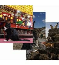 岩合光昭の世界ネコ歩き 第3弾 ブルーレイ 全3枚セット 送料無料動物カメラマン・岩合光昭さんがかわいいネコたちをもとめて世界を歩きます。第3弾は、台湾・ポルトガル・瀬戸内海のネコを撮影します。