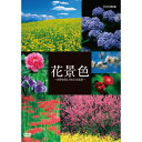 花景色 〜四季を彩る 日本の名風景〜 DVD 10P03Dec16