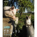 岩合光昭の世界ネコ歩き ウルグアイ ブルーレイ