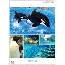 An Aquarium ?������? �����`������ DVD